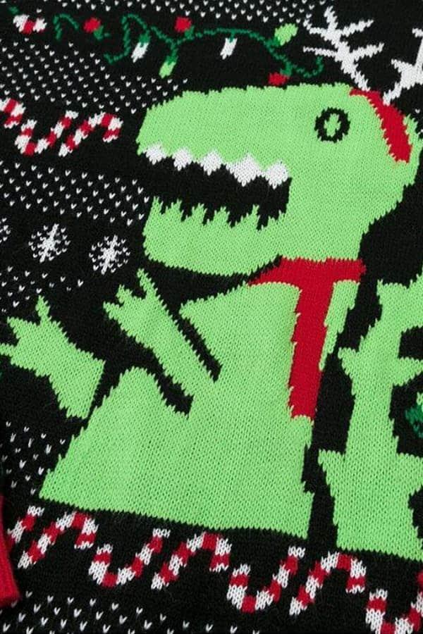 Pull Moche Dinosaure Femme - Détail Dinosaure